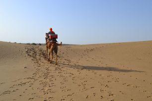 jaisalmer safaria deserto india (215)