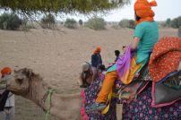 jaisalmer safaria deserto india (29)