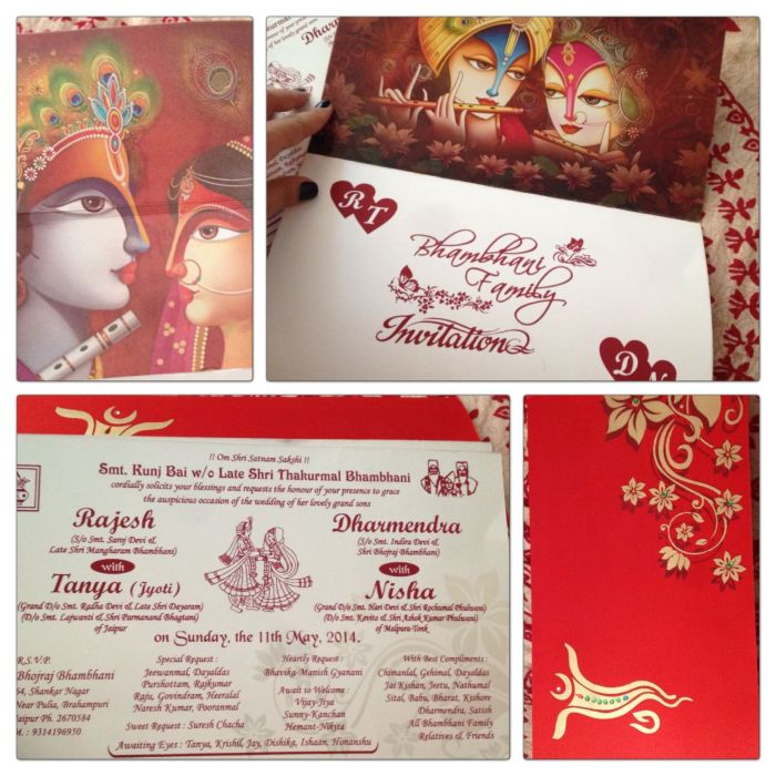 casamento indiano (6)