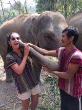 peregrina chiang mai tailandia (3)