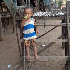 cambodia (51)